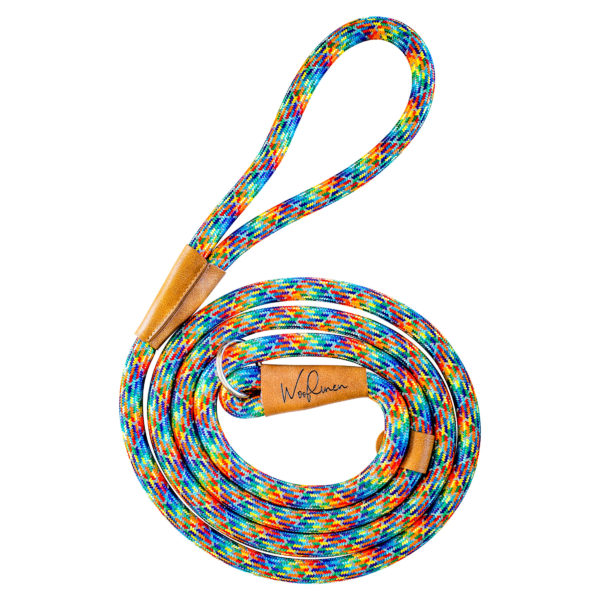 Rainbow 7' Slip Leash